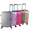 Valise Trolley Rigide Wellington Grande (COQUE ULTRA-SOLIDE,INCASSABLE)